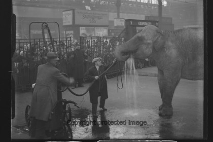 038 5351 
