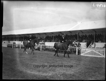 030 5204 