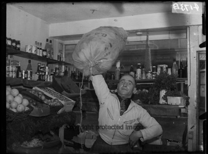 031 5289 